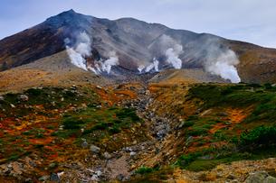 旭岳の紅葉の写真素材 [FYI04670162]