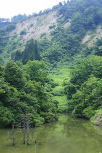 神沢川水没地区の写真素材 [FYI04670290]