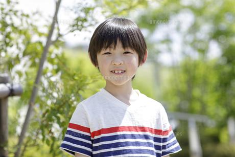 小学生の男の子のポートレートの写真素材 [FYI04670571]