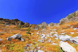 秋の中央アルプス千畳敷カールの写真素材 [FYI04670788]