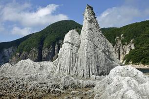 【地学教材】 仏ヶ浦の緑色凝灰岩(グリーンタフ)の写真素材 [FYI04670882]