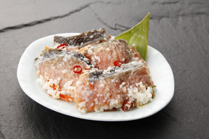 鮭の飯寿司の写真素材 [FYI04671161]