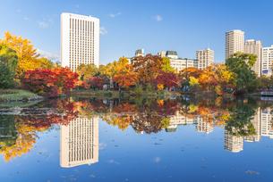 秋色の中島公園の写真素材 [FYI04671174]