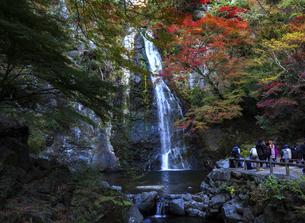 箕面大滝の写真素材 [FYI04671175]