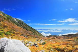 秋の中央アルプス千畳敷カールの写真素材 [FYI04671181]