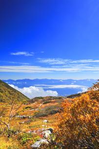 秋の中央アルプス千畳敷カールの写真素材 [FYI04671185]
