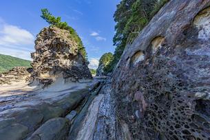 竜串海岸の様々な奇岩風景の写真素材 [FYI04671267]