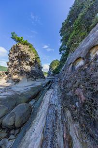 竜串海岸の様々な奇岩風景の写真素材 [FYI04671268]