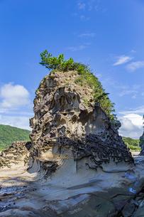 竜串海岸の様々な奇岩風景の写真素材 [FYI04671269]