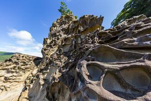 竜串海岸の様々な奇岩風景の写真素材 [FYI04671270]