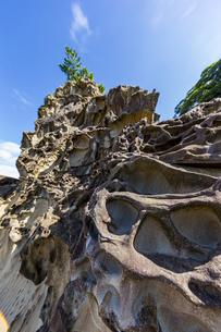 竜串海岸の様々な奇岩風景の写真素材 [FYI04671271]