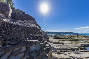 太陽と竜串海岸の様々な奇岩風景の写真素材 [FYI04671273]