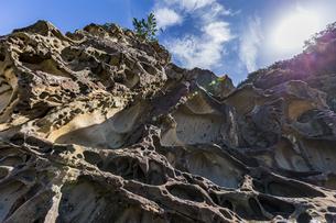 太陽と竜串海岸の様々な奇岩風景の写真素材 [FYI04671274]