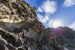 太陽と竜串海岸の様々な奇岩風景の写真素材 [FYI04671277]