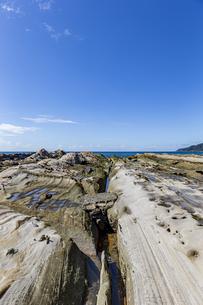 竜串海岸の様々な奇岩風景の写真素材 [FYI04671338]