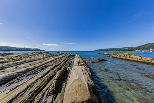 竜串海岸の様々な奇岩風景の写真素材 [FYI04671342]