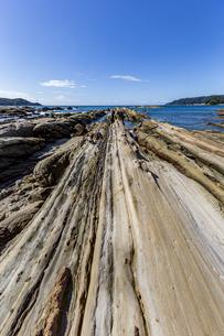 竜串海岸の様々な奇岩風景の写真素材 [FYI04671346]