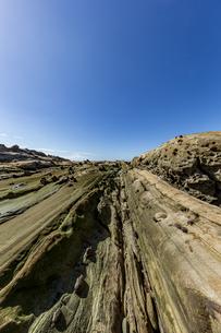 竜串海岸の様々な奇岩風景の写真素材 [FYI04671354]
