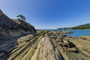 竜串海岸の様々な奇岩風景の写真素材 [FYI04671356]