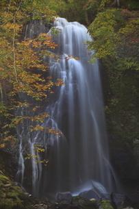 滝と紅葉の写真素材 [FYI04671358]