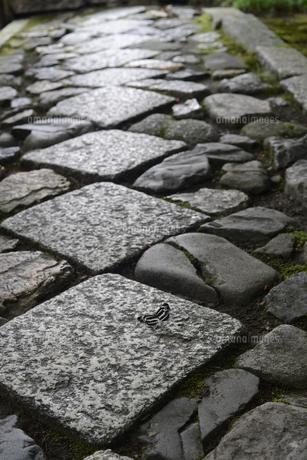 石畳の写真素材 [FYI04671361]