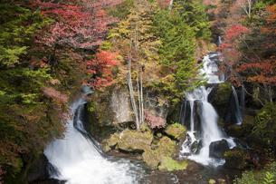 紅葉と竜頭の滝の写真素材 [FYI04671445]