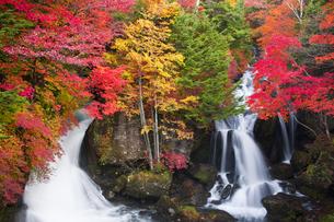 紅葉と竜頭の滝の写真素材 [FYI04671458]