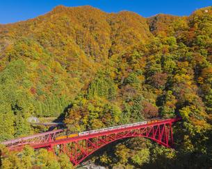 紅葉と黒部峡谷トロッコ電車の写真素材 [FYI04671473]