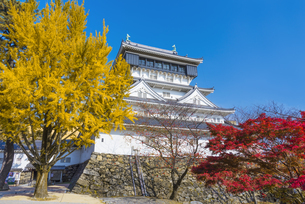 紅葉と小倉城の写真素材 [FYI04671475]