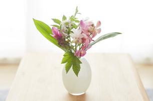 テーブルに飾られている花の写真素材 [FYI04671518]