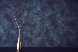 金色の一輪挿しと枝の写真素材 [FYI04671544]