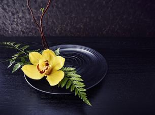 黒い皿に活けられた枝と葉っぱと黄色い花の写真素材 [FYI04671547]