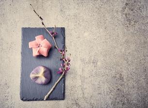 黒い石板に置かれた二つの和菓子と枝の写真素材 [FYI04671550]