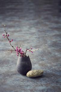 一輪挿しの枝と小石の写真素材 [FYI04671567]