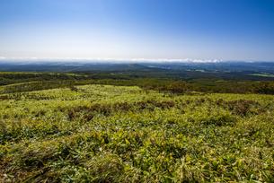 摩周岳の山麓の草原の写真素材 [FYI04671659]