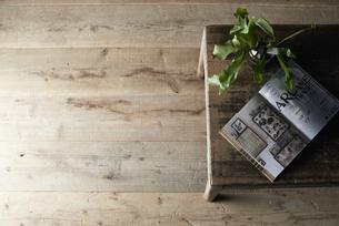 机の上に開いた本と植物を置いた部屋の写真素材 [FYI04671670]
