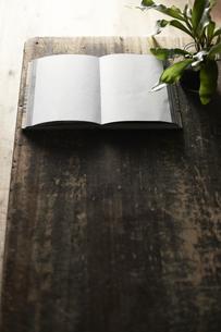 開いた本と植物を置いた机の写真素材 [FYI04671678]