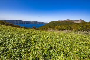 摩周湖と摩周岳、笹原の写真素材 [FYI04671696]