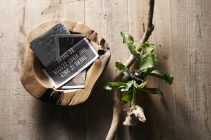 床に置いた植物と流木と木の器の写真素材 [FYI04671697]