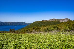 摩周湖と摩周岳、笹原の写真素材 [FYI04671699]