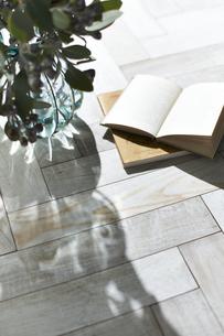 床に置かれた本と花瓶に入った植物の写真素材 [FYI04671712]