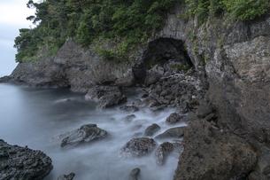 伊豆の汐吹公園の写真素材 [FYI04672251]