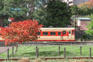 秋の妄想汽車旅 ~小樽市総合博物館~の写真素材 [FYI04672285]