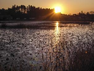 夕暮れの池の写真素材 [FYI04672426]