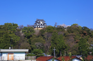 彦根城天守閣眺望の写真素材 [FYI04672558]