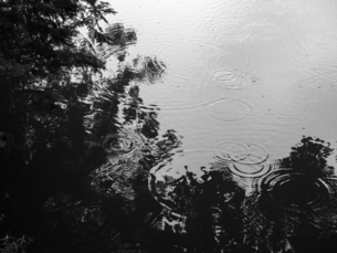 雨降る池のほとりの写真素材 [FYI04672724]
