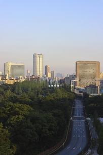 美しい外苑の緑と向こうにそびえる港区の高層ビル群の写真素材 [FYI04672813]