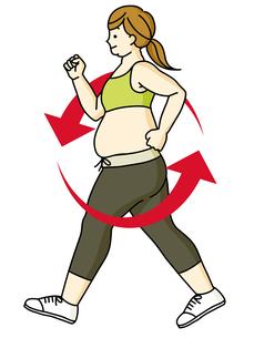 肥満の女性-ウォーキング-循環のイラスト素材 [FYI04672880]