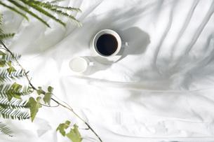 植物の影が差し込む窓辺と白い布とコーヒーカップのある写真素材の写真素材 [FYI04672940]