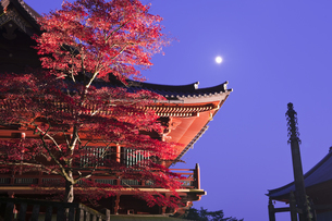 輪王寺夜景の写真素材 [FYI04673095]